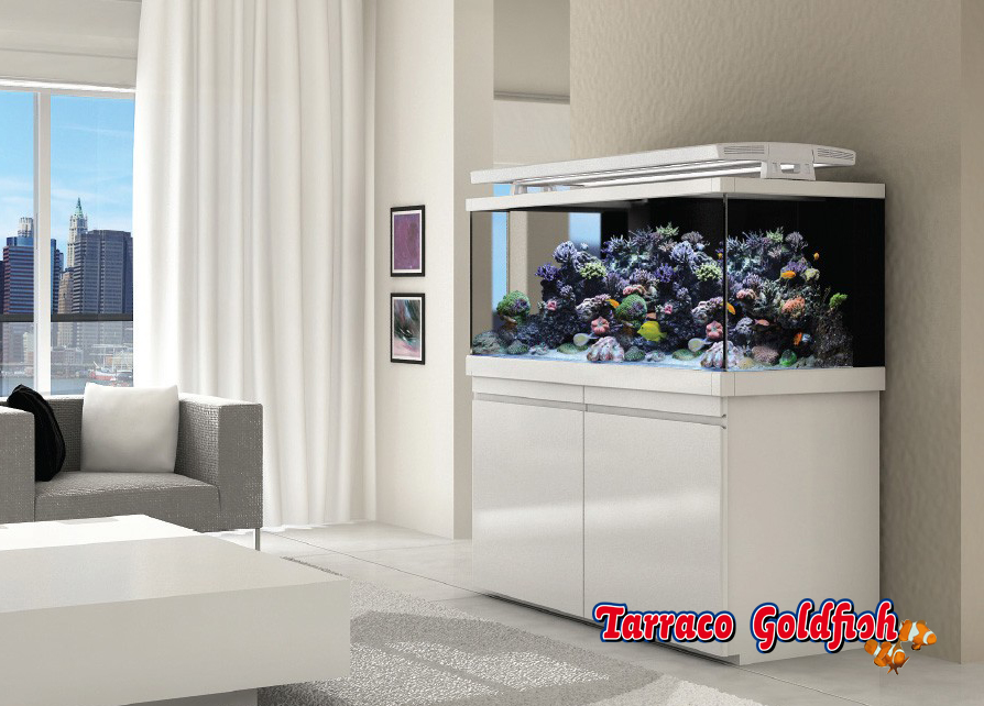 Red sea acuario completo max s line 500 color tarraco - Peceras para casa ...