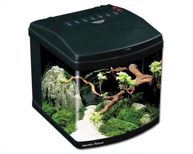 aquatic nature acuario evolution 1 negro tarraco goldfish tienda online. Black Bedroom Furniture Sets. Home Design Ideas